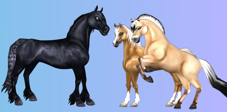 Here are some of our Generation 1 horses!