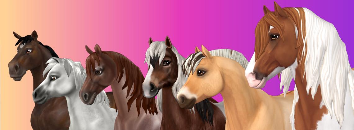 Horse Generations