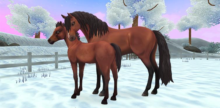 Denne hesten gleder seg til å møte deg!