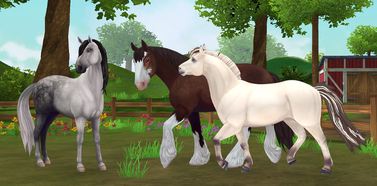 Clydesdale, Lusitano, Fjord… So many horses to choose from!