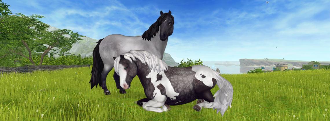 Fler nya hästar!