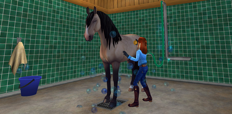 Have some bonding time with your favorite horse!