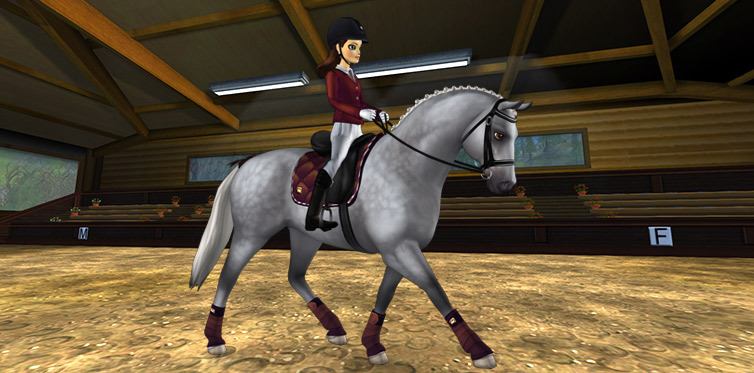 Perfect for any competitive rider!