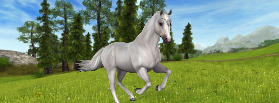 The NEW Starter Horse!