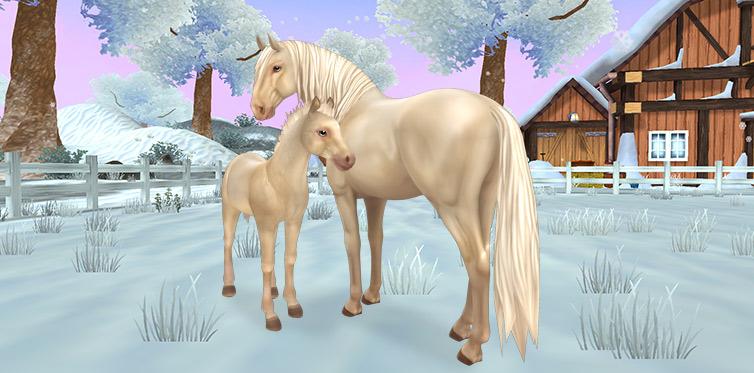 Ny häst i Star Stable Horses!