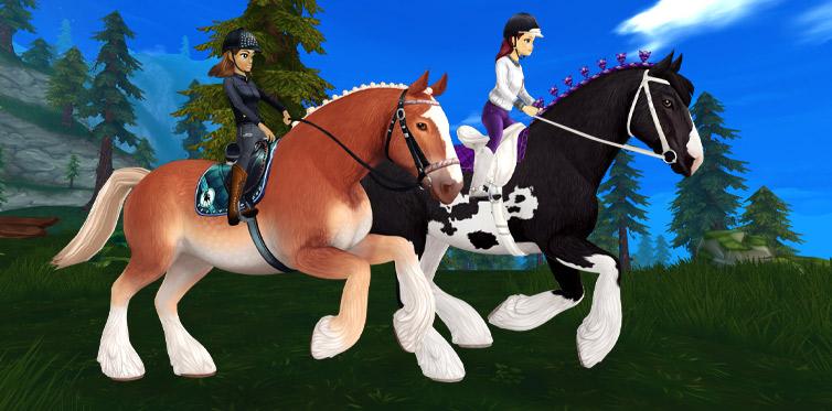Wir können von diesen bezaubernden Pferden gar nicht genug bekommen!