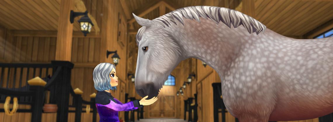 Potężne konie clydesdale!