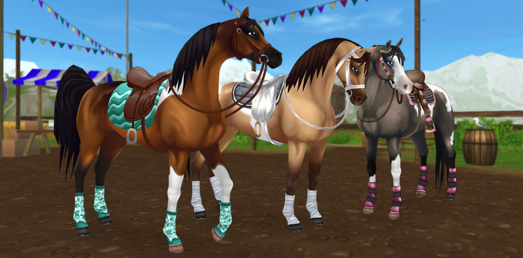 Special deals on some special Pinto Arabians!
