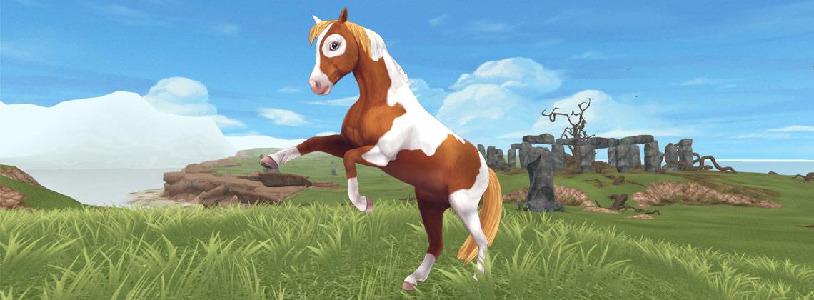De vernieuwde Chincoteague-pony!