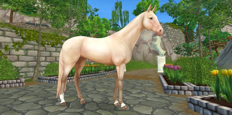 Vänta bara tills du får se hur hästen glänser!