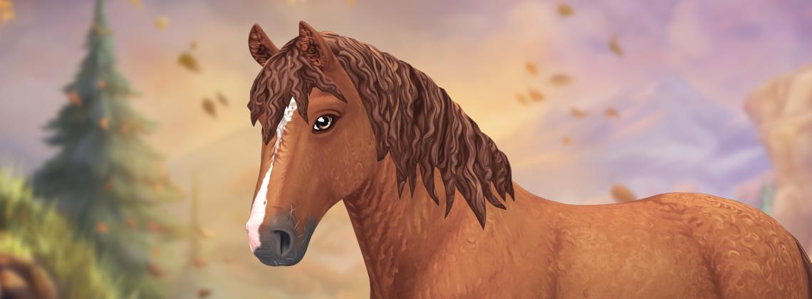 O cavalo mais felpudo de todos os tempos!