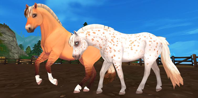Это что, две фиордские лошади?