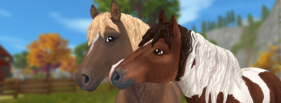 We can't get enough of fluffy horses!