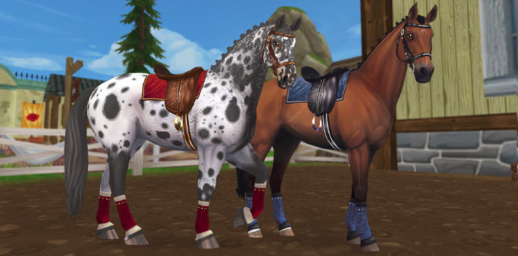 Blue or red - you and your horse will look epic no matter what color scheme you choose!