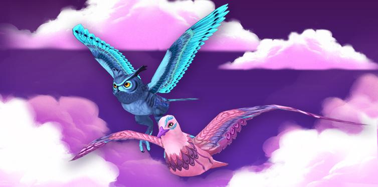 De coolaste fåglarna man kan tänka sig!
