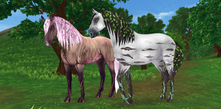 The magical horses of the Lusitano type are now known as Barkhart!