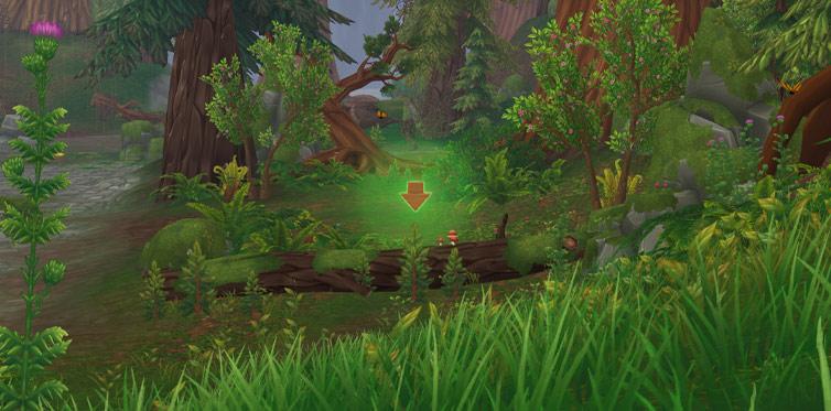 Nimm die Herausforderung in den Wildwoods an!