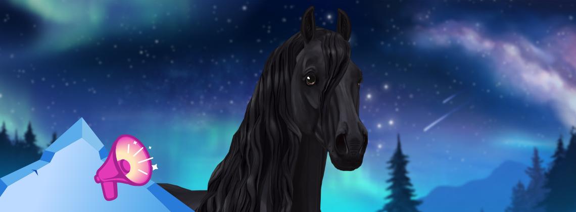 Cudowne konie fryzyjskie!