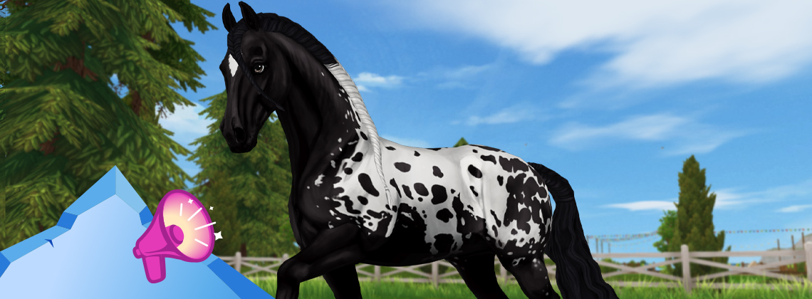 More Friesian fun!