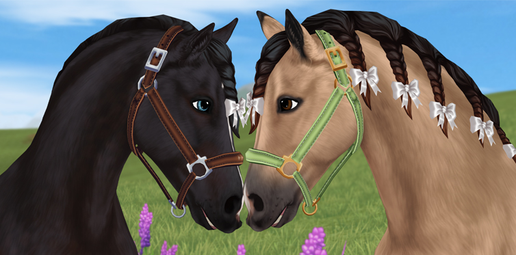How adorable are these halters?