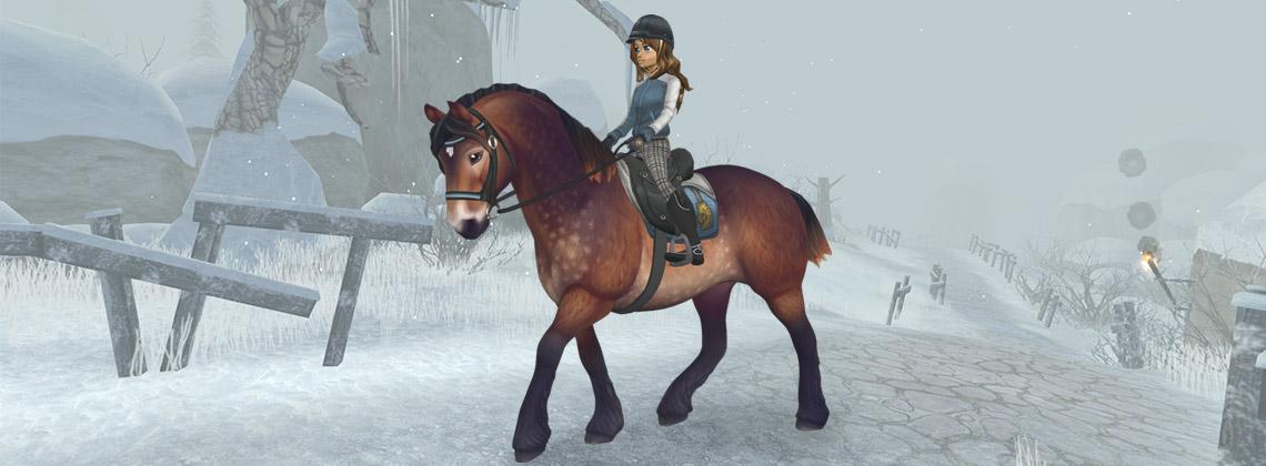 New North Swedish Horses!